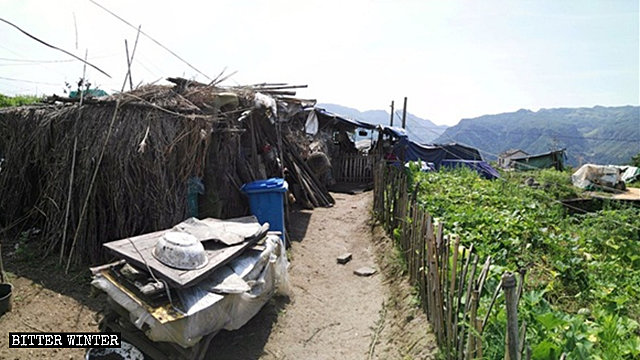 One of the bamboo sheds where more than 30 elderly people live.